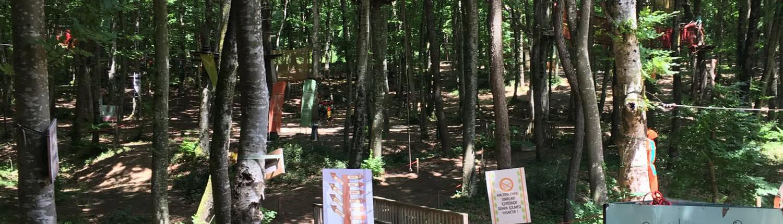 Skola Travel Okul Gezileri - Forest Kemerburgaz Okul Gezisi