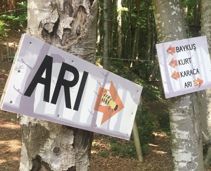 Skola Okul Turları - Forest Kemerburgaz Okul Gezisi