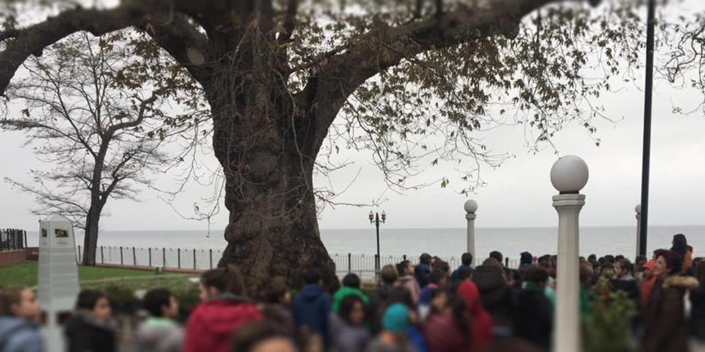 Şişli Terakki Tepeören Yalova Yürüyen Köşk Gezisi - Skola Travel